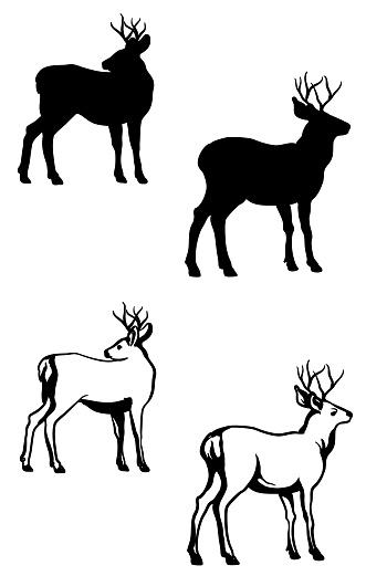 Bucks Silhouette