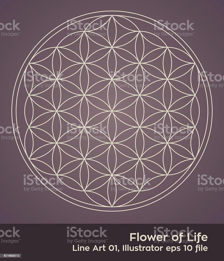 buddhism chakra illustration: Flower of Life Simple – Vektorgrafik