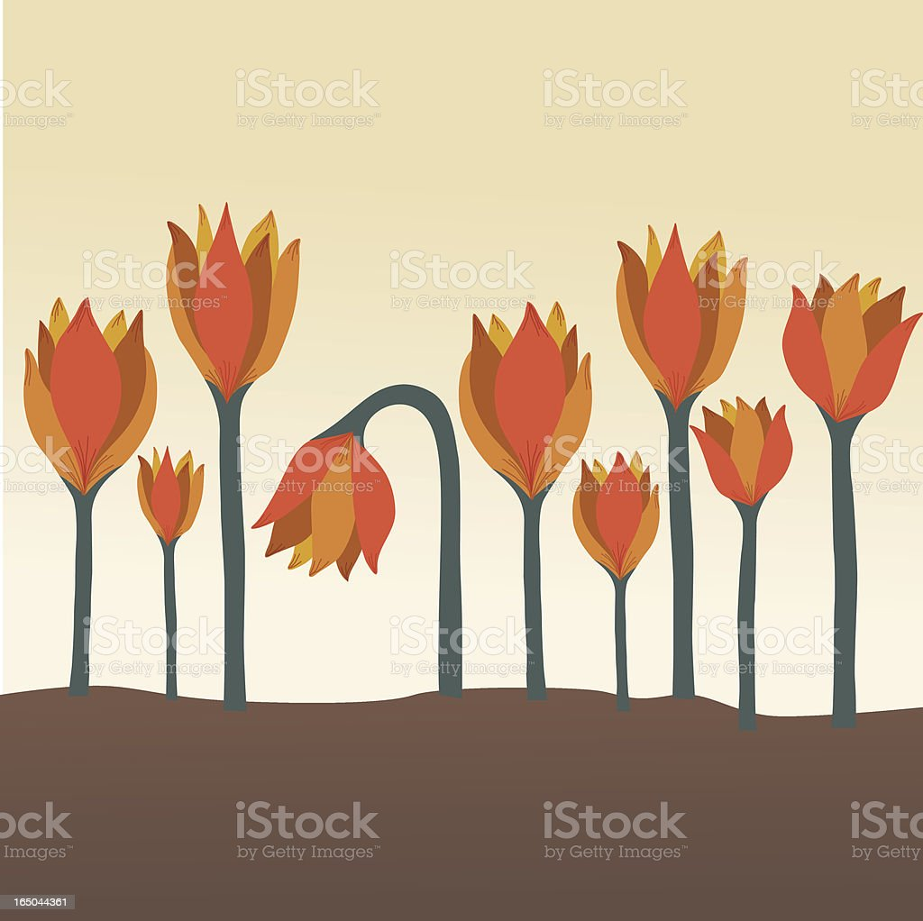 royalty free withered flower clip art vector images