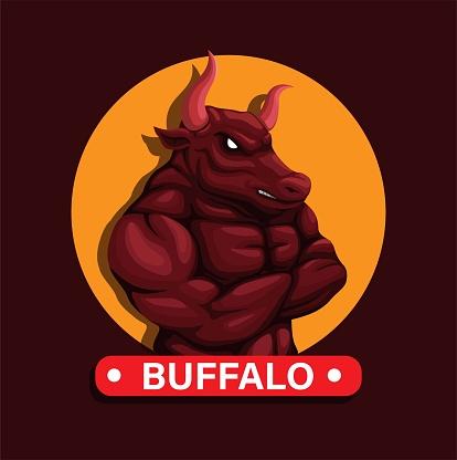 Buffalo animal mascot character vector