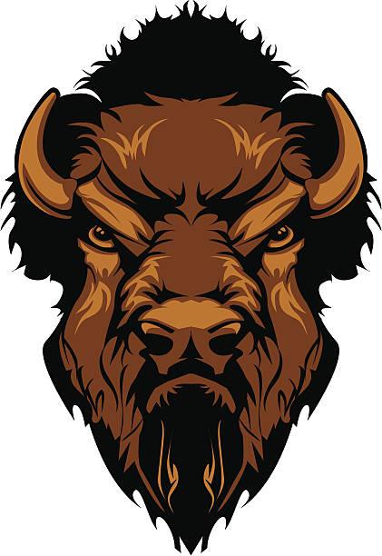 Buffalo Bison Mascot Head Graphic Graphic Mascot Image of a Buffalo Bison Head american bison stock illustrations