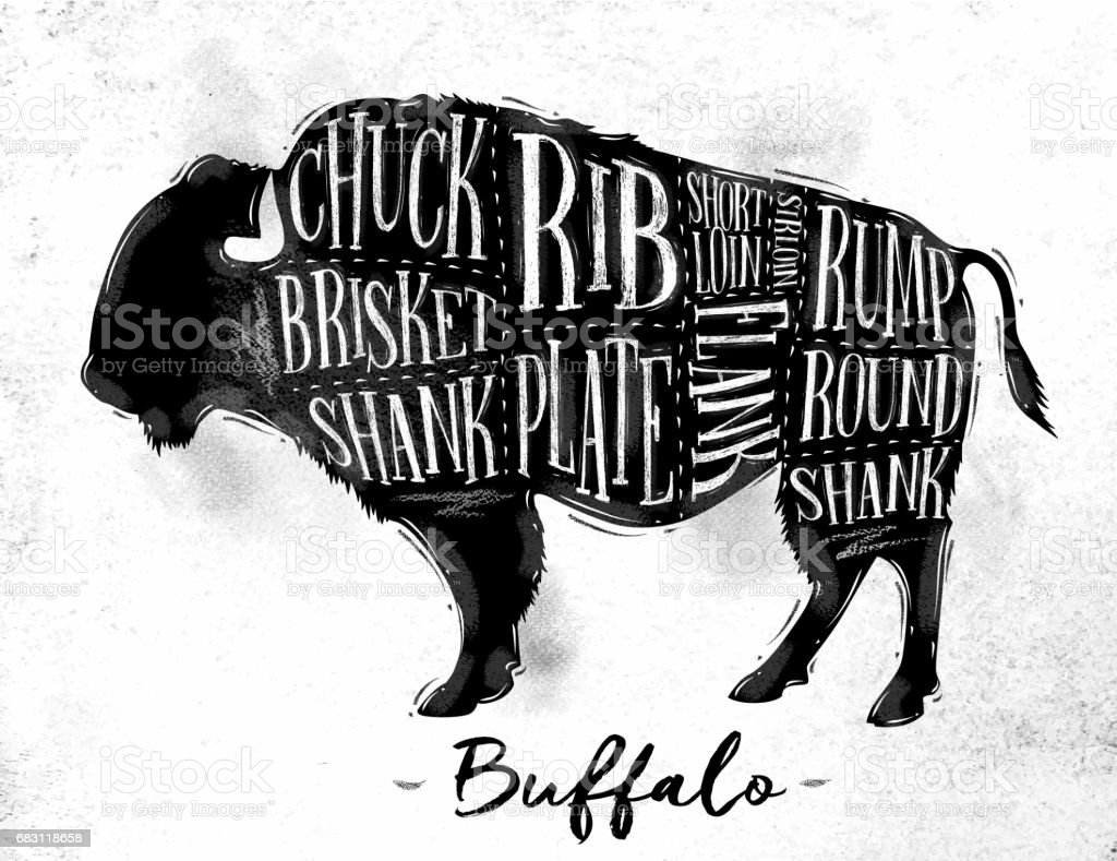 Buffalo cutting scheme vector art illustration