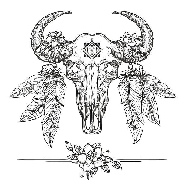 buffalo or american bison skull - animal skull stock illustrations