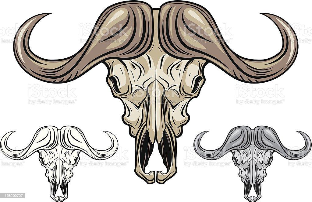 Buffalo skull isolated on white vector art illustration