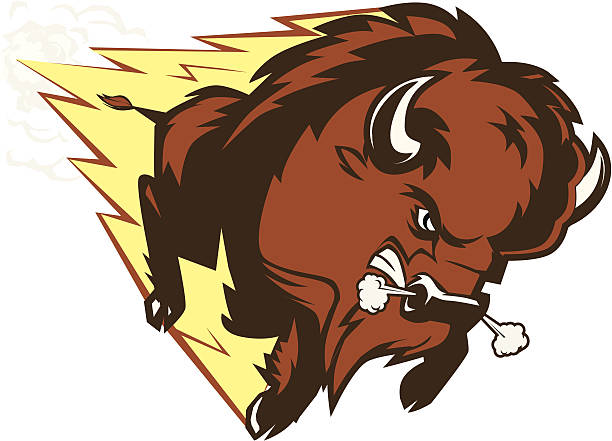Buffalo Thunder An angry buffalo mascot american bison stock illustrations