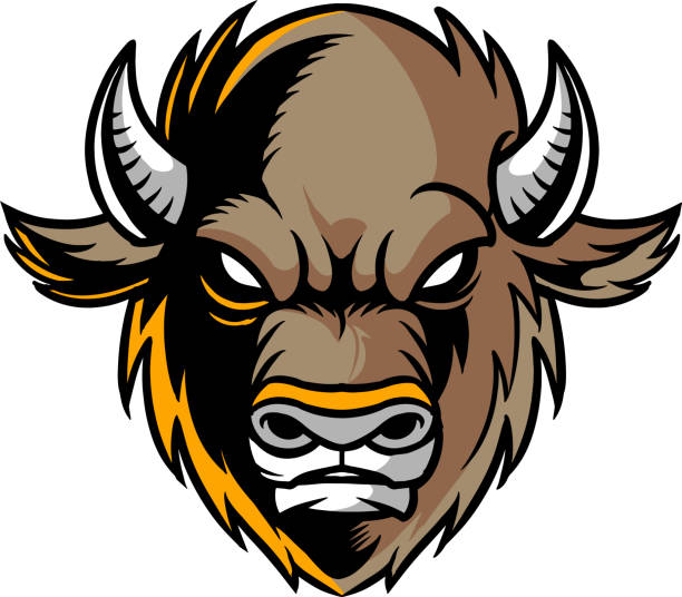 Buffalo The illustration shows a Buffalo face. He has small horns, an angry face and brown fur color. american bison stock illustrations