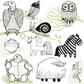 Buffalo, zebra, tortoise, owl, vulture, newt, snail, unicorn and fish