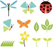 Illustration of bugs and garden graphic elements: dragonfly, butterfly, ladybug, leaf, plants, grass, flower and buds.