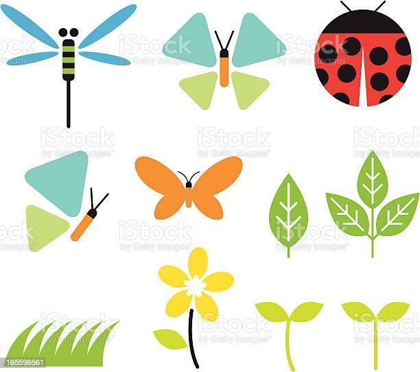 Bugs and garden vector id165596561?b=1&k=6&m=165596561&s=612x612&h=f  hejecgdbgfpdnq jjwgudljr7en8d5hgf6 0gvwq=