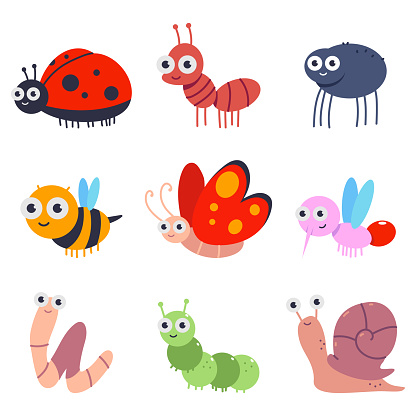 Bugs and insects vector cartoon set isolated on a white background.