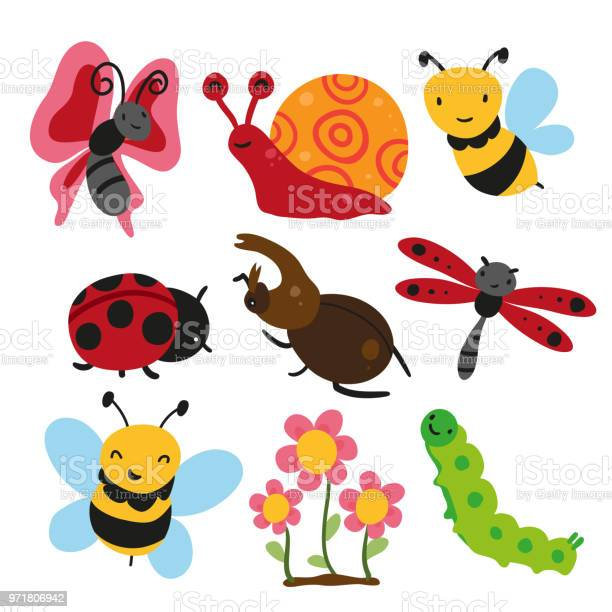 Bugs collection insect vector design vector id971806942?b=1&k=6&m=971806942&s=612x612&h=ecdes0rd ccepeh1msq5f8urkzortbohd ooq hpqf0=