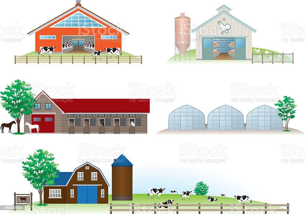 Building / Livestock vector art illustration
