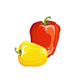 Bulgarian pepper yellow and red, fresh vegetable. Vector illustration.