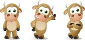 Bull Baby Poses