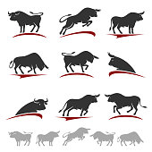 Bull collection set. Vector
