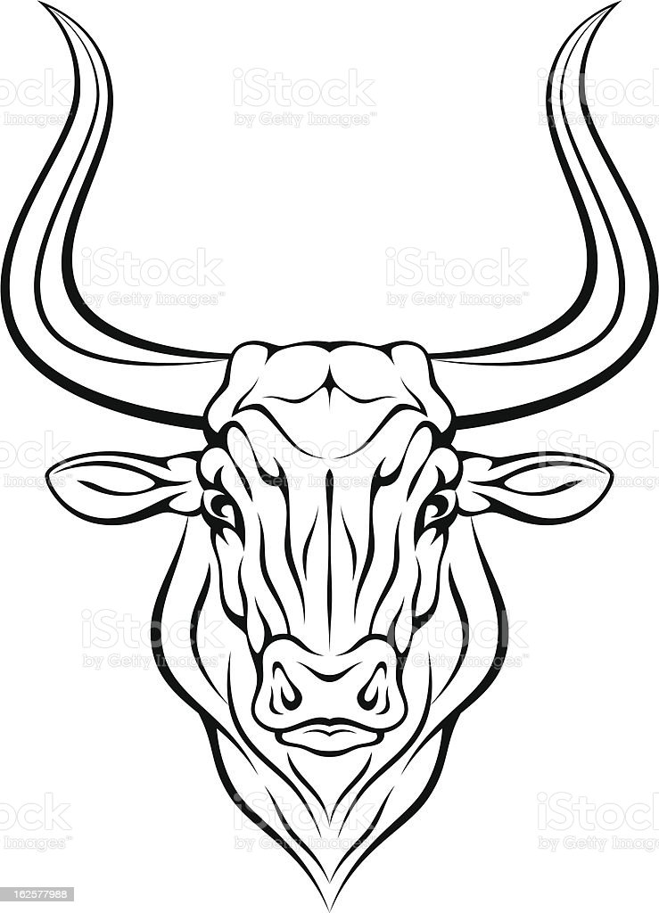 It's just a photo of Transformative Bull Head Drawing
