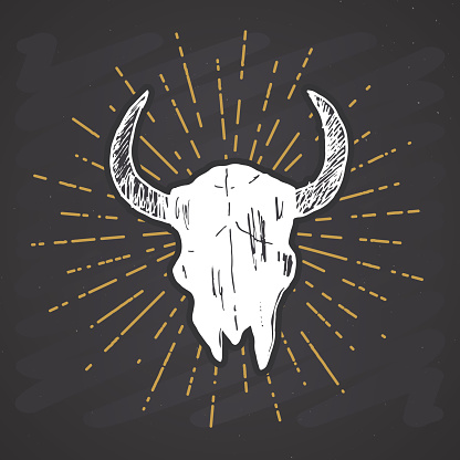 Bull or cow skull, animal head graphic print. T-shirt typography design. Vector illustration on chalkboard background