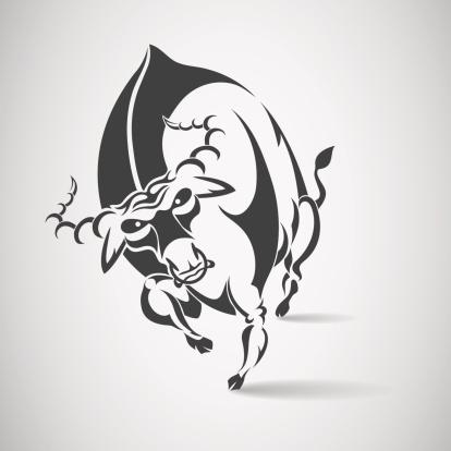 bull runs