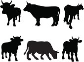 Bull silhouettes at different angles.