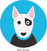 Bull terrier dog face flat icon, dog series