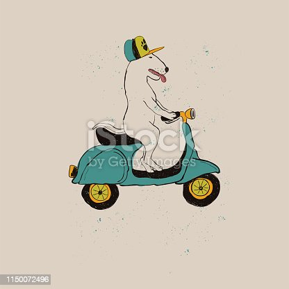 Bull Terrier Dog Riding Motorbike