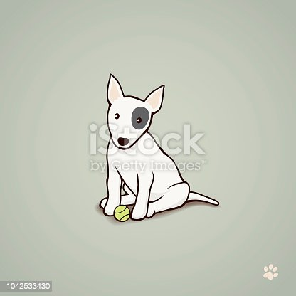 Front view of a Bull Terrier sitting with a tennis ball