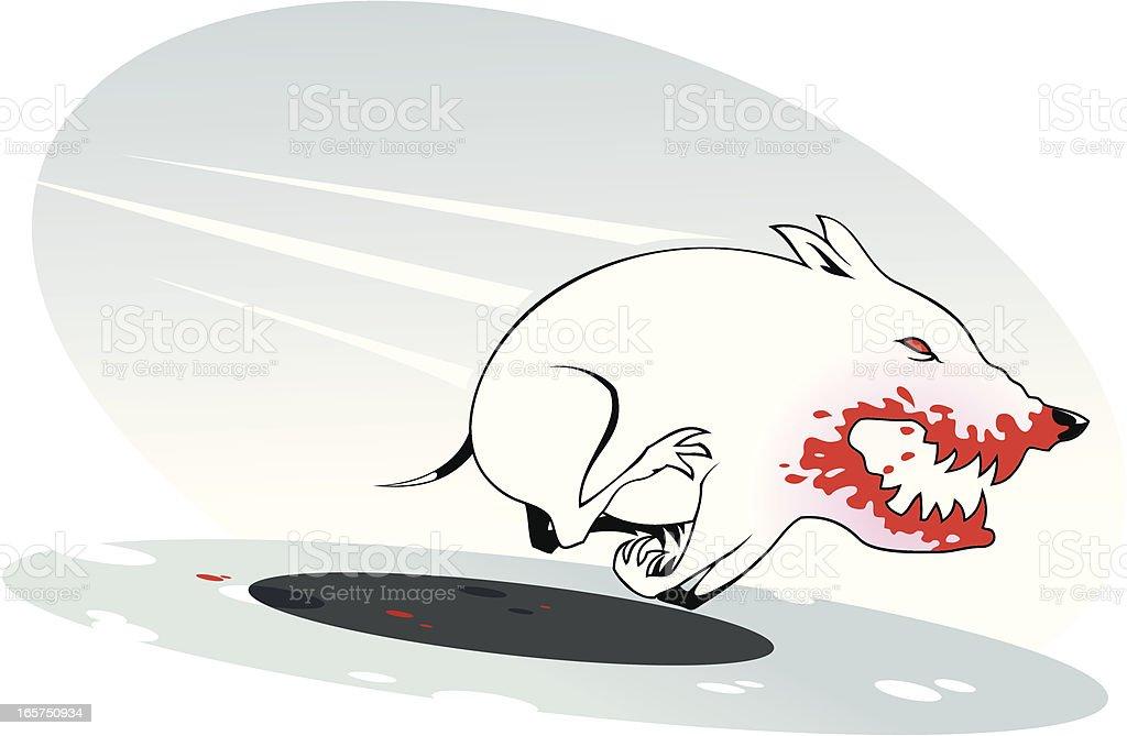 Bull Terrier vector art illustration