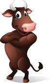 - vector illustration of a cartoon bull
