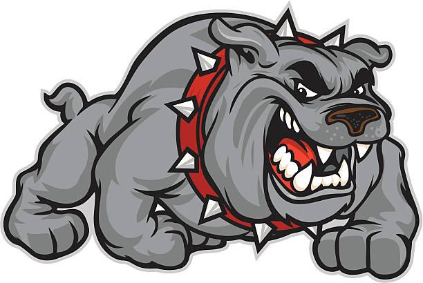 bildbanksillustrationer, clip art samt tecknat material och ikoner med bulldog classic - bulldog