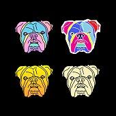 bulldog face vector illustration, colorful pop art style
