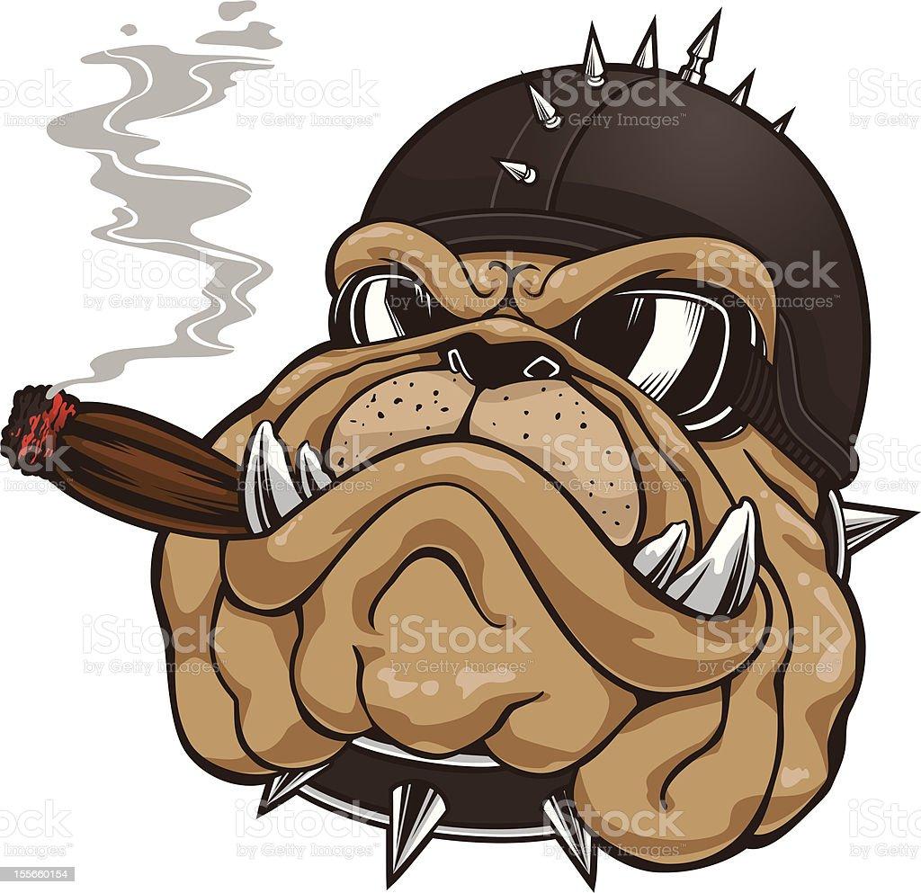 Bulldog Head Mascot vector art illustration