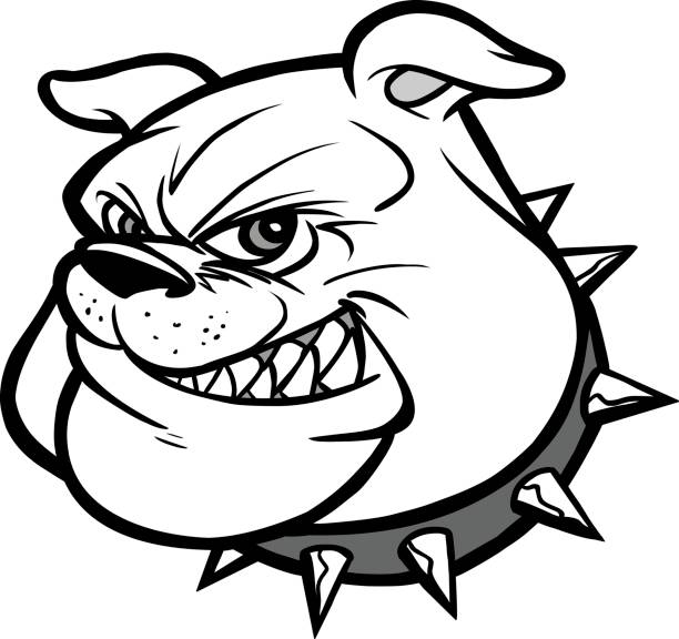 bulldog mascot head illustration - spiked stock illustrations