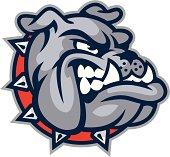 istock Bulldog Mascot Head 165800099