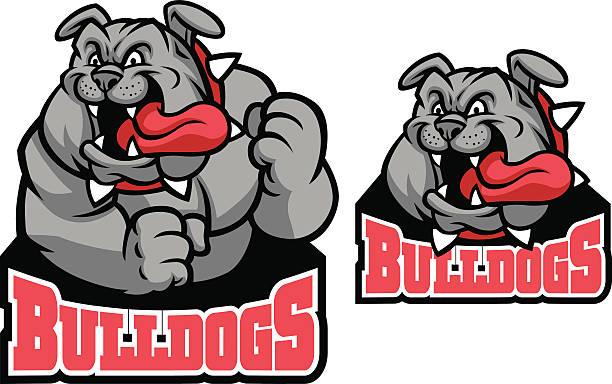 bildbanksillustrationer, clip art samt tecknat material och ikoner med bulldog mascot - bulldog