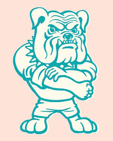Bulldog Rolling Up Sleeve