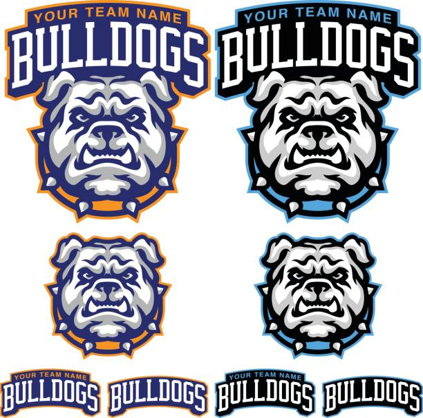 Bulldog Sports Kit This is a great Bulldog sports kit created for team and organizations. This mascot has bold and clean vector lines making a great addition to any form of product development. mascot stock illustrations