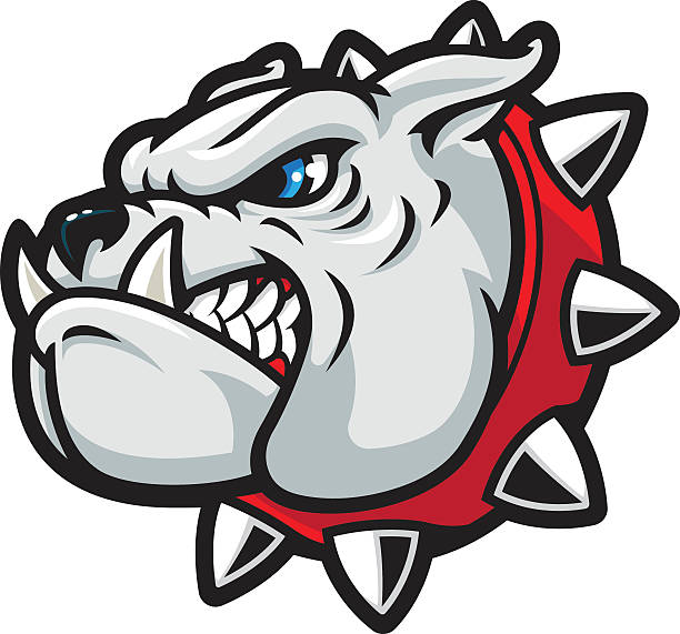 bildbanksillustrationer, clip art samt tecknat material och ikoner med bulldog tough - bulldog
