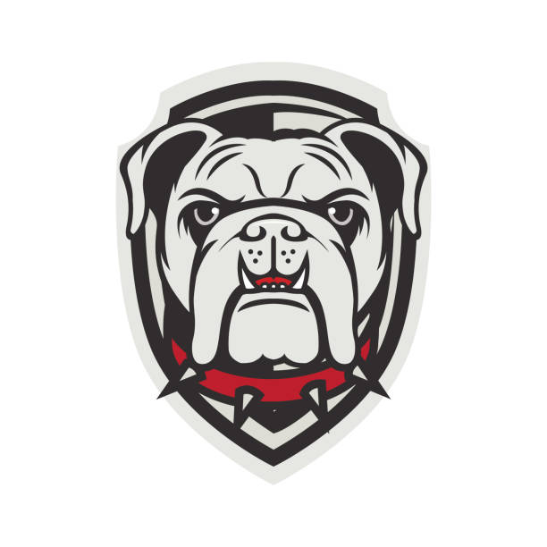 bildbanksillustrationer, clip art samt tecknat material och ikoner med bulldog vektor - bulldog
