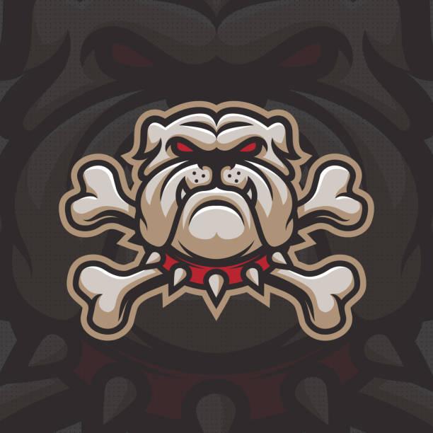 bildbanksillustrationer, clip art samt tecknat material och ikoner med bulldog med ben maskot design. - bulldog