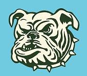 istock Bulldog With Spiked Collar 533330173
