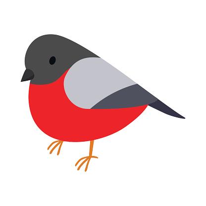 Bullfinch icon, isometric 3d style