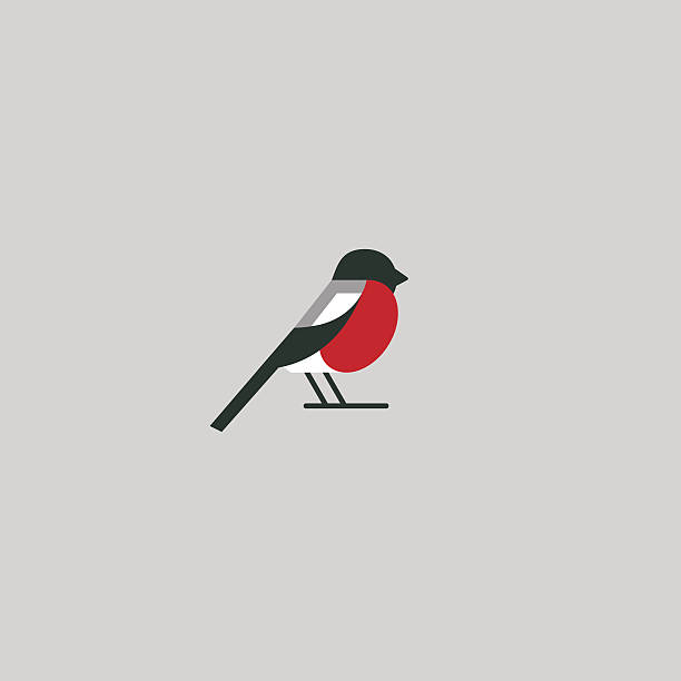 Bullfinch icon Bullfinch icon design. Abstract concept bird. Vector illustration. finch stock illustrations