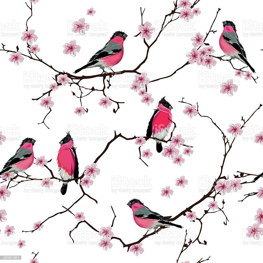 Bullfinches on the sakura branch seamless vector pattern vector art illustration