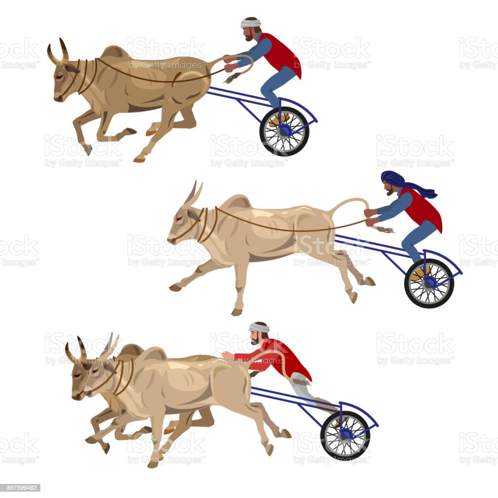Bullock cart race vector art illustration