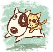 Bullterrier and kitten