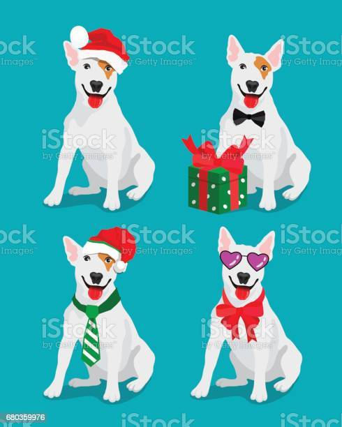 Bullterrier dog in a new year hat vector id680359976?b=1&k=6&m=680359976&s=612x612&h=plkyasrwfnvwrrgy7qm3q0puurtmsxmfopsrwmeqk0o=