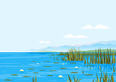Lake with water lily and bulrush plants nature landscape illustration, fishing place, pond with blue water and mountains in distance, lake travel background picturesque terrain on a windless day