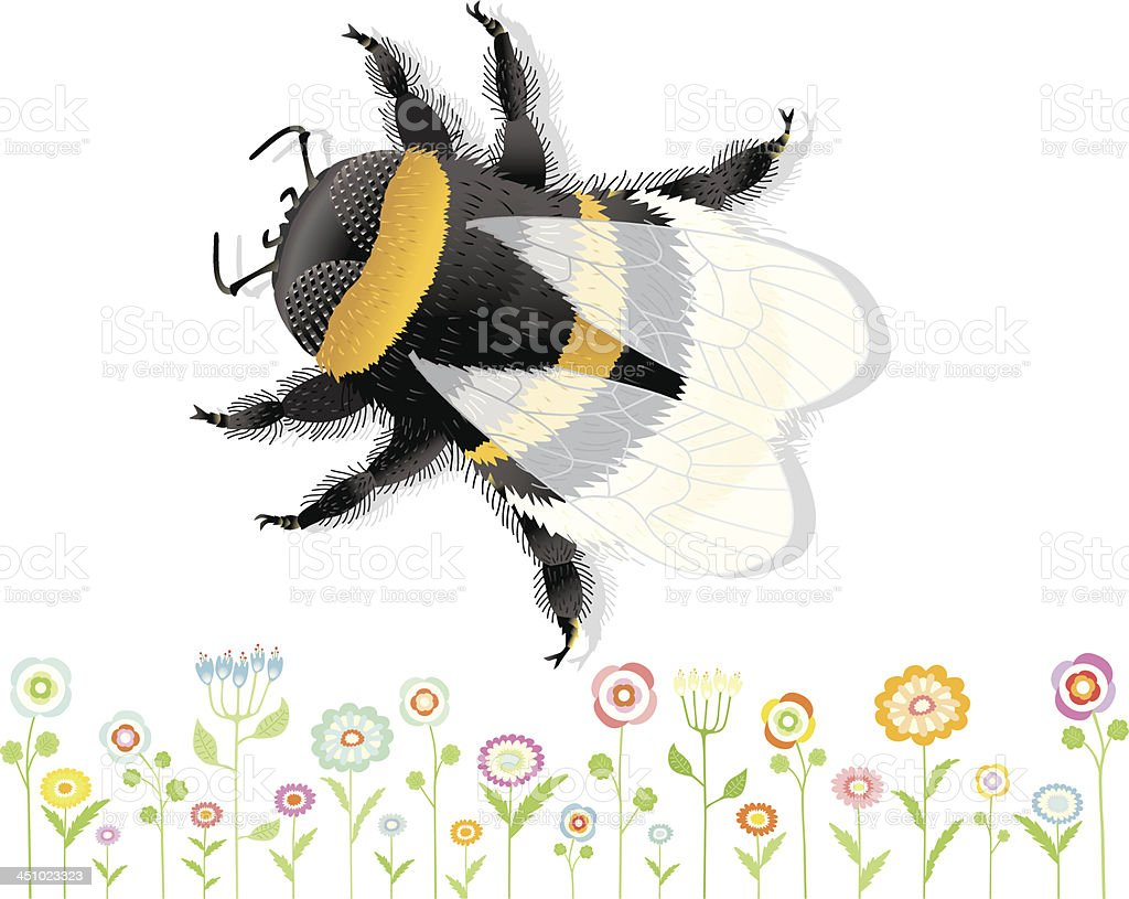 Bumblebee with nice Flowers. vector art illustration
