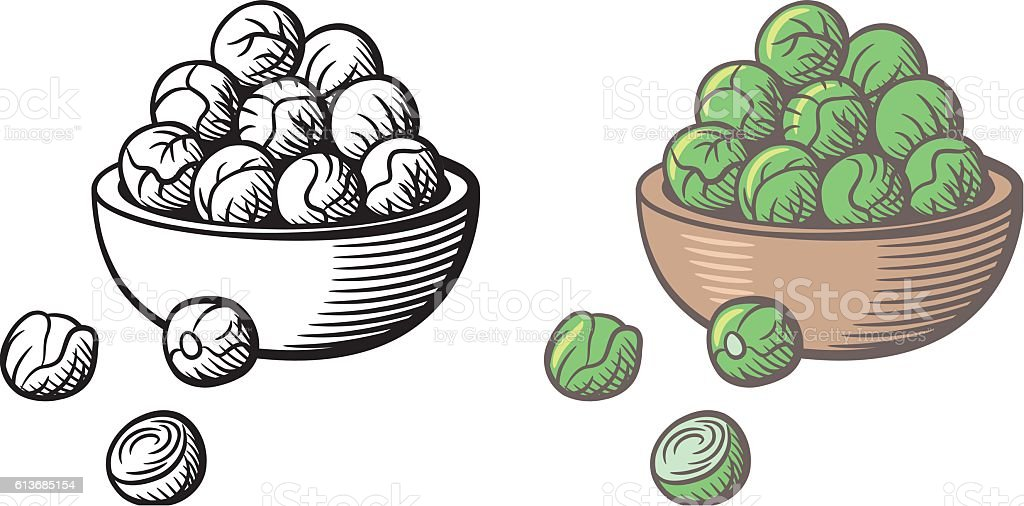 Bunch of brussels sprouts in a bowl vector art illustration