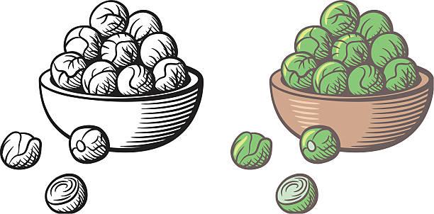 stockillustraties, clipart, cartoons en iconen met bunch of brussels sprouts in a bowl - spruitjes